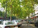 parisian-boulevard.jpg